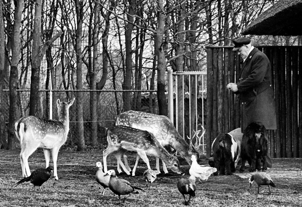 1973 Heiloo Hertenkamp 6 pro